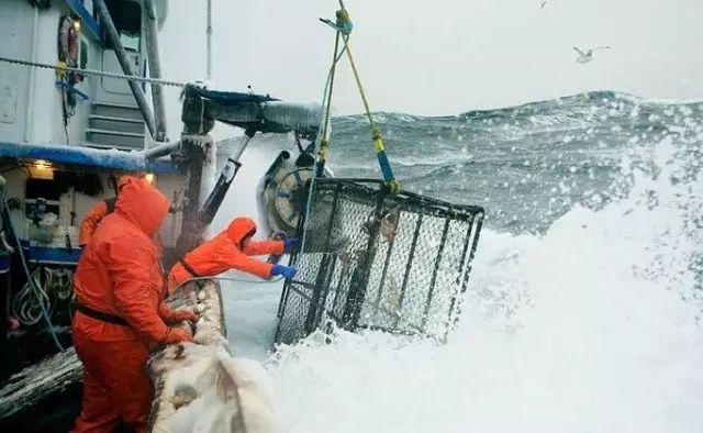 我们吃海鲜最大的误区